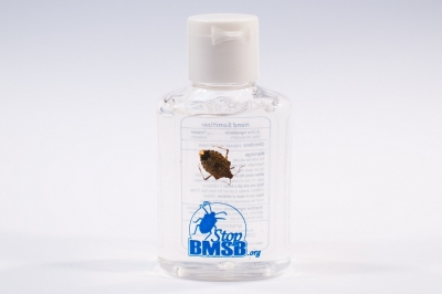 BMSB_bottle_small